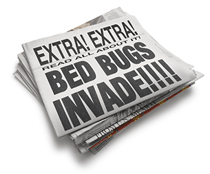 Bed Bugs Invade